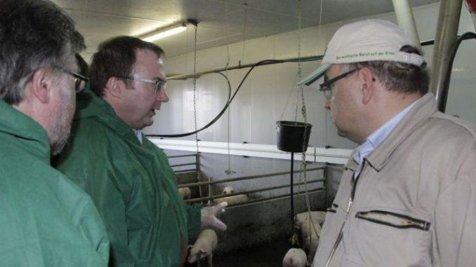 Gutachten löst starke Betroffenheit aus - Mitglieder des Kompetenzkreises Tierwohl im Bundeslandwirtschaftsministerium besichtigten kürzlich den Sauenhaltungsbetrieb von Thorsten Riggert (rechts) im Landkreis Uelzen.