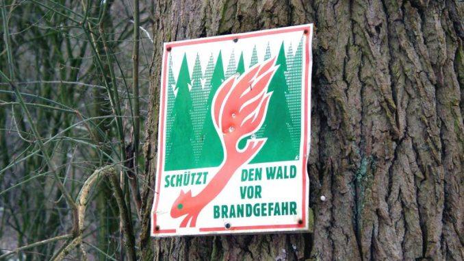 Heidewälder bieten heute mehr Schutz vor Feuer -