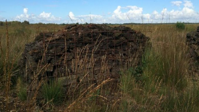 Neuer Entwurf zum LROP stellt noch nicht zufrieden - Foto: Landvolk