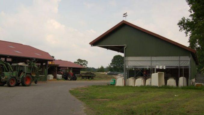 Agrarhaushalt aufgestockt - Foto: Landvolk