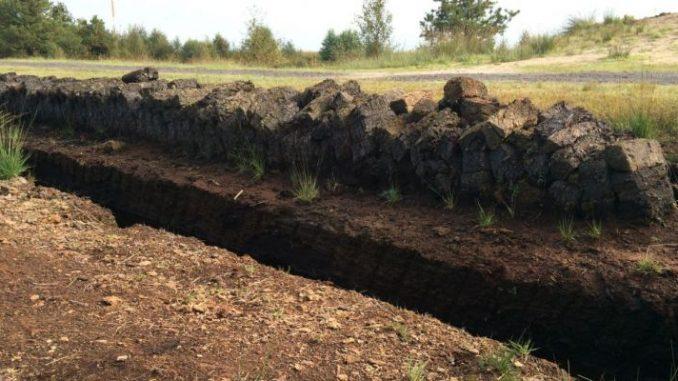 Der neue LROP-Entwurf birgt noch einige Kritikpunkte - Foto: Landvolk