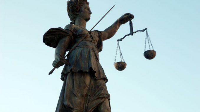 Landwirte entscheiden am Amtsgericht mit - Foto: landpixel