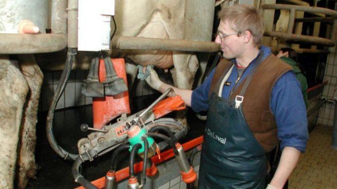 Kritik am Milch-Vorstoß - Foto: Archiv
