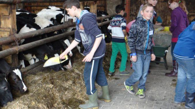 Zum Zukunftstag 2016 auf Niedersachsens Höfe - Foto: Landvolk Archiv