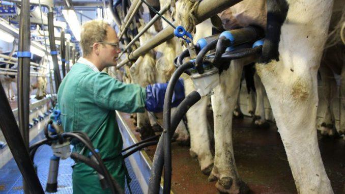 Grüne Agrarminister schüren falsche Erwartungen - Foto: Landvolk