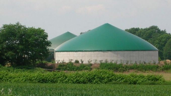 Biogasbranche trifft sich in Osnabrück - Foto: Landvolk