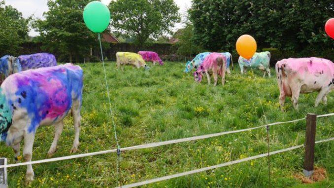 Farbe bekennen - nicht nur mit Kühen - Foto: LHV
