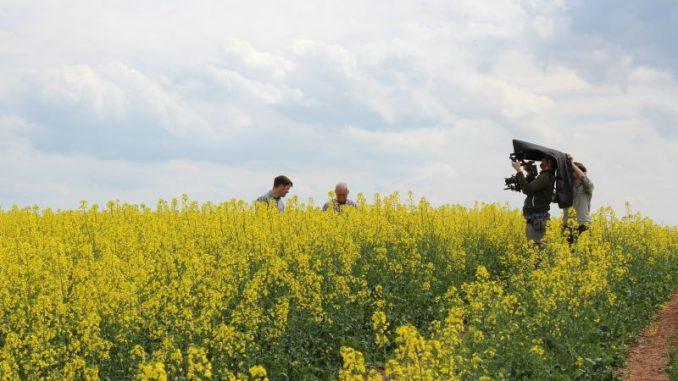 Niedersachsens Bauern begeistern im Netz - Foto: Landvolk