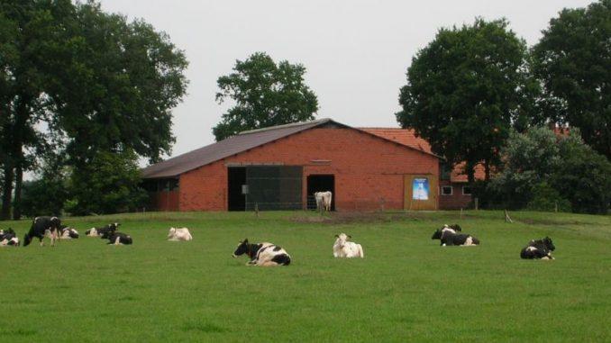 Grüne Minister verkennen Notlage der Milchbauern - Foto: Landvolk