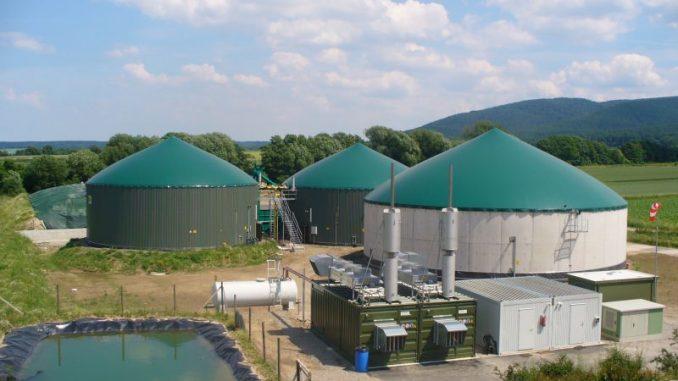 Biogasanlagen liefern ein Viertel des Ökostroms - Foto: Archiv