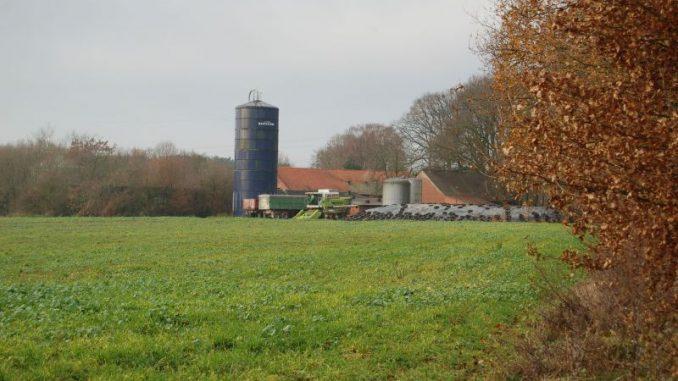 Stabilisierung wichtigstes Betriebsziel - Foto: Landvolk