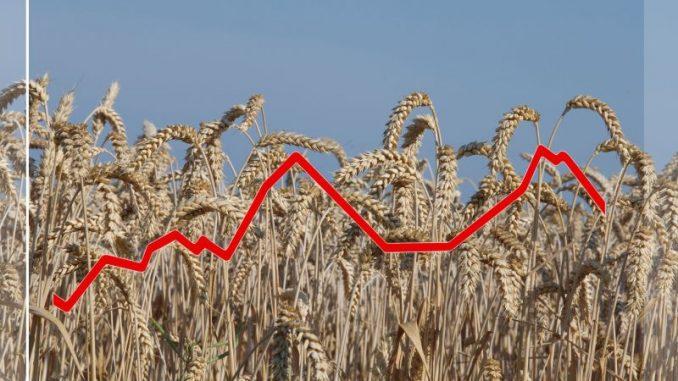 Mini-Bestseller bietet Informationen zu Landwirtschaft - Foto: landpixel