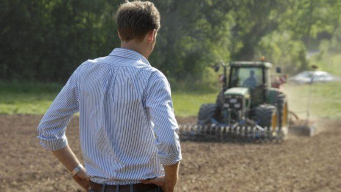 Direktzahlungen stützen Einkommen der Landwirte - Foto: Landpixel