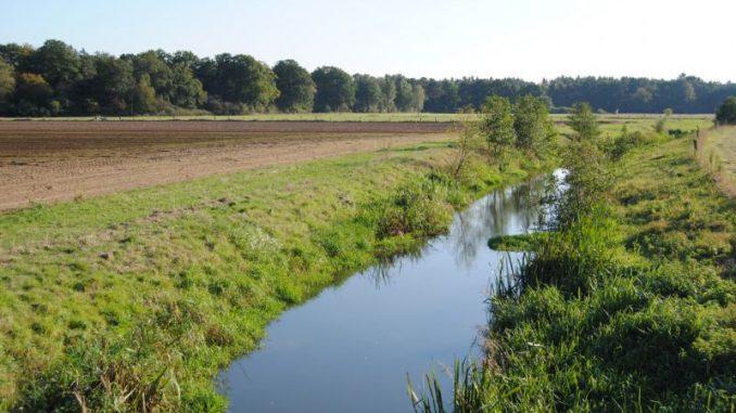 Wassergesetz bleibt in der Kritik - Foto: Landvolk