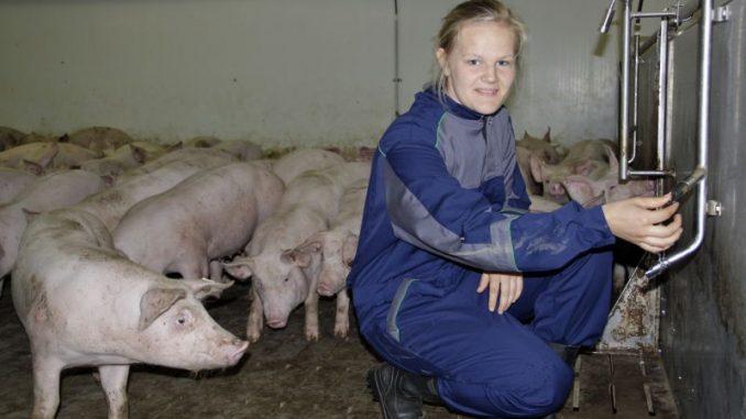 Deutsches Schweinefleisch in Asien gefragt wie nie - Foto: Landvolk