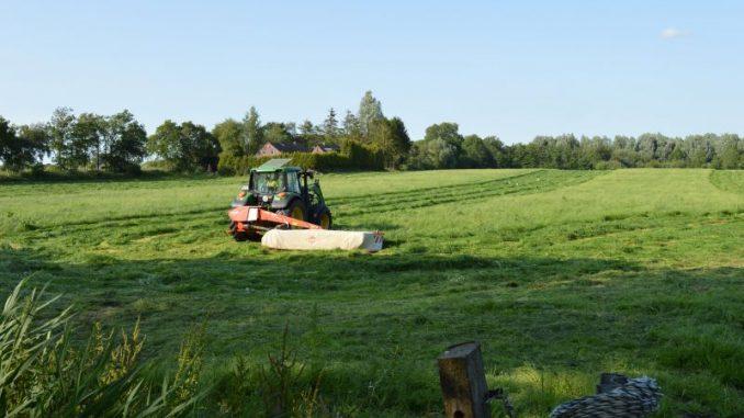 Landwirte nutzen Schönwetterpriode für 1. Schnitt - Foto: Landvolk