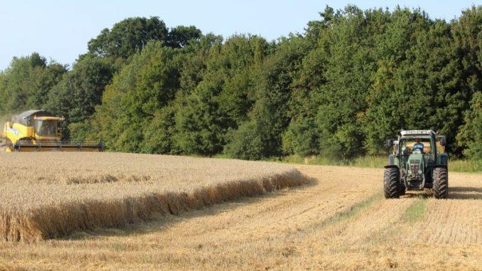Landwirte wollen wieder mehr investieren - Foto: Landvolk
