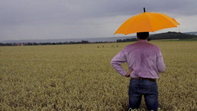 Kein Erntewetter in Sicht - Foto: Landpixel