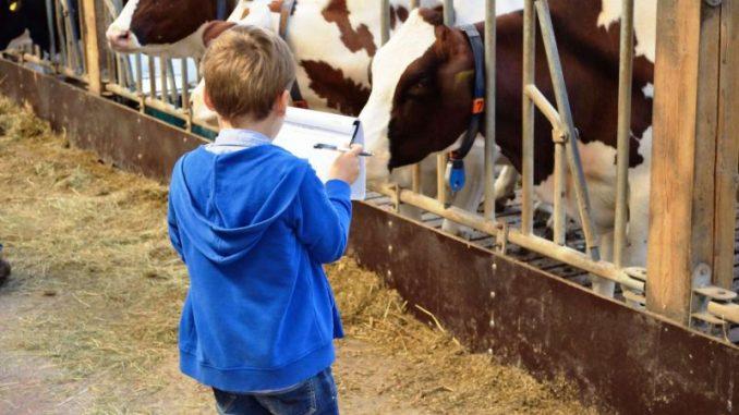 Kinder haben Spaß am Lernort Bauernhof - Foto: RUBA