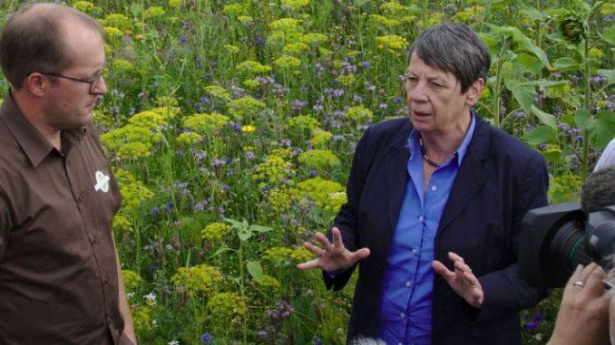 Bauern engagieren sich für Natur und Umwelt - Foto: Bauernverband Nordostniedersachsen