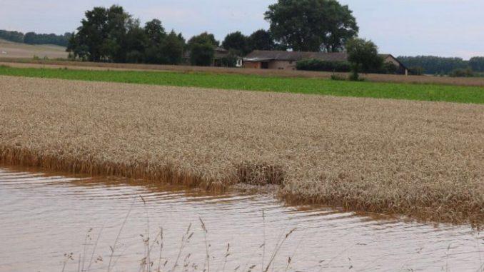 Hochwasserschäden zunächst erfassen - Foto: Landvolk Göttingen