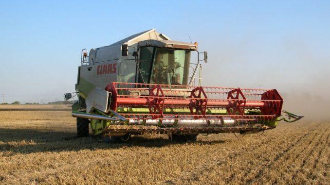 Getreideernte noch nicht abgeschlossen - Foto: Landvolk
