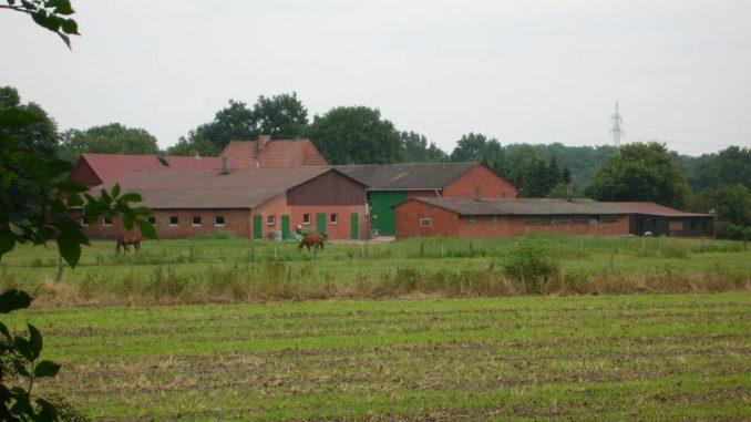 Wählen und den ländlichen Raum stärken! - Foto: Landvolk
