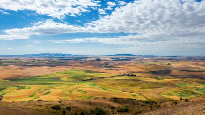 Loccumer Agrartagung diskutiert zukünftige GAP -