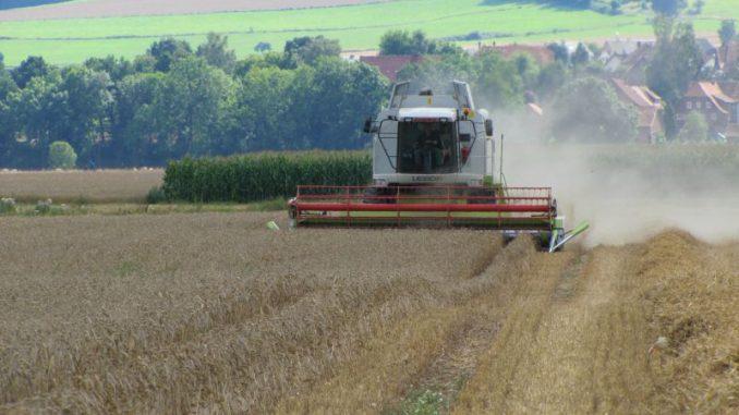 Landwirte auf Erfolgskurs - Foto: Landvolk