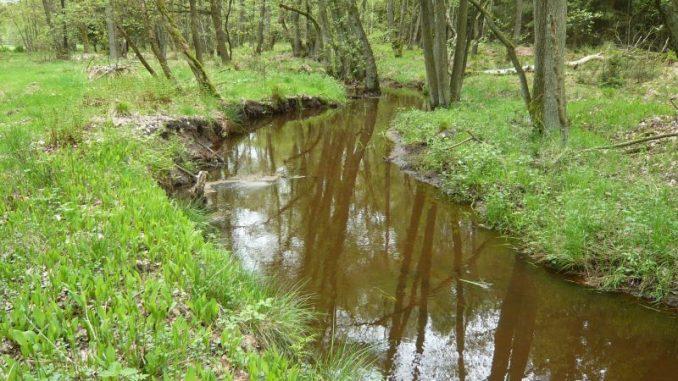 Grundeigentümer und Nutzer wollen bei Natura 2000 deutlich stärker beteiligt werden - Foto: Rohloff