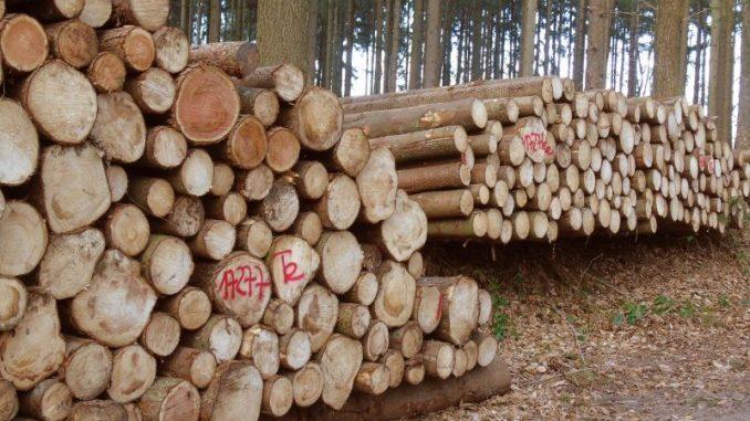 Weniger Holzeinschlag