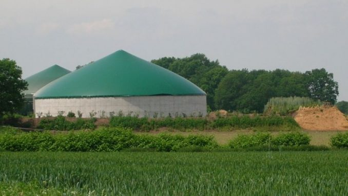 Optimierung landwirtschaftlicher Biogasanlagen - Foto: Landvolk
