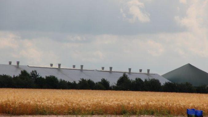 Bauerntag zurrt Positionen fest -