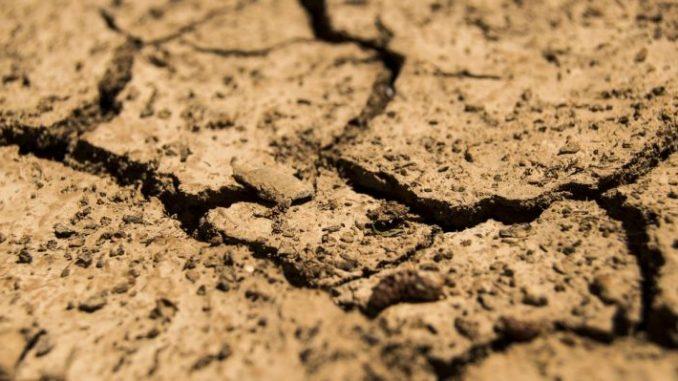 Dürre drückt auf die Stimmung -