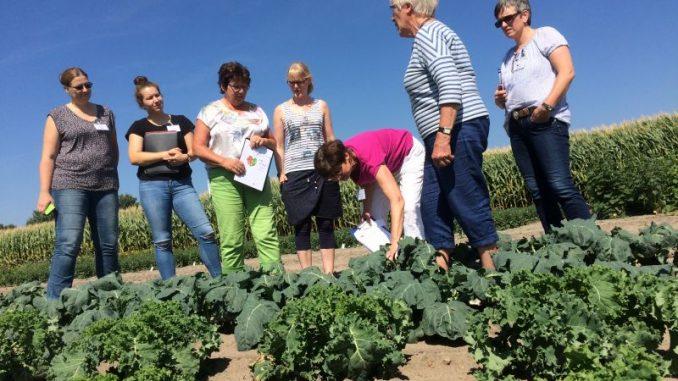 Kenntnisse über Landwirtschaft und Ernährung - Foto: Landvolk