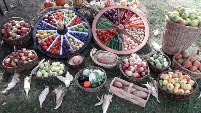 Die Ernte feiern – Feste weisen auf das Ende hin - Foto: Landvolk