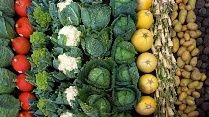 Öko-Gemüse aus Niedersachsen ist gefragt - Foto: pixabay