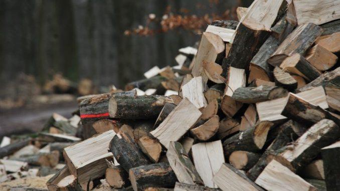 Holz sorgt für wohlige Wärme - Foto: Nds. Landesforsten