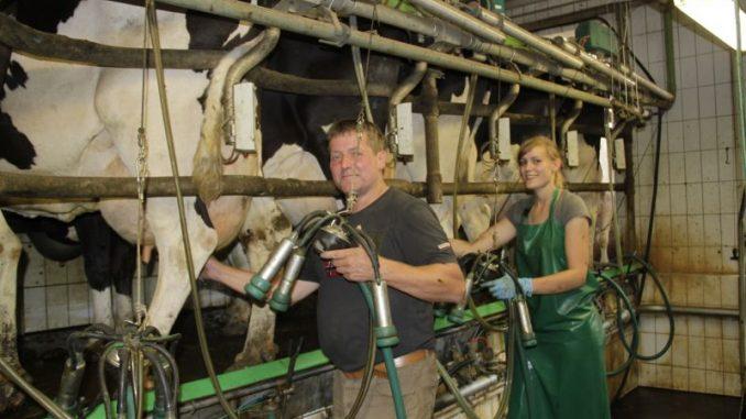 Milchmarkt zwischen Optimismus und Unsicherheit - Foto: Landvolk