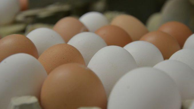 Ein Ei gleicht eben nicht dem anderen ... - Foto: Landvolk
