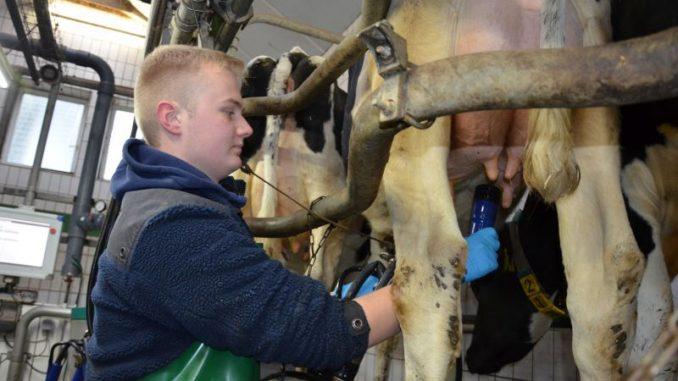Milchbranche bleibt in Bewegung - Foto: Landvolk
