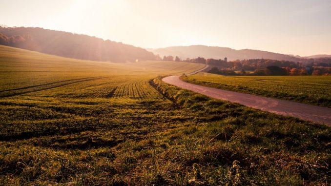 Innovationen in der Landwirtschaft fördern - Foto: pixabay
