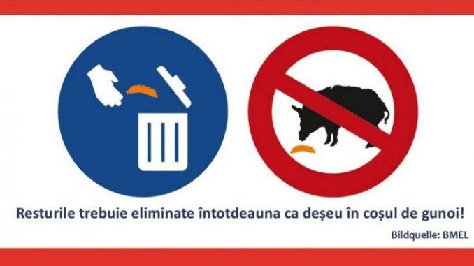 Vorsorge soll Schweinepesteintrag vermeiden - Foto: Landvolk