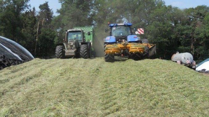 Auf den Wiesen wird jetzt Futter geerntet - Foto: Landwirtschaftskammer