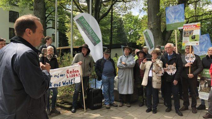 Weidetierhalter fordern aktives Wolfsmanagement - Foto: Landvolk Niedersachsen
