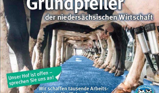 Milchbauern bieten Blickfänge - Foto: LVN