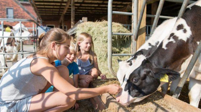Urlaub auf dem Bauernhof bleibt ein Renner - Foto: AG Urlaub und Freizeit auf dem Lande e.V.