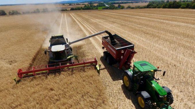 Harter Brexit trifft deutsche Landwirtschaft weniger - Foto: Pascal Stude Pro terra gbr