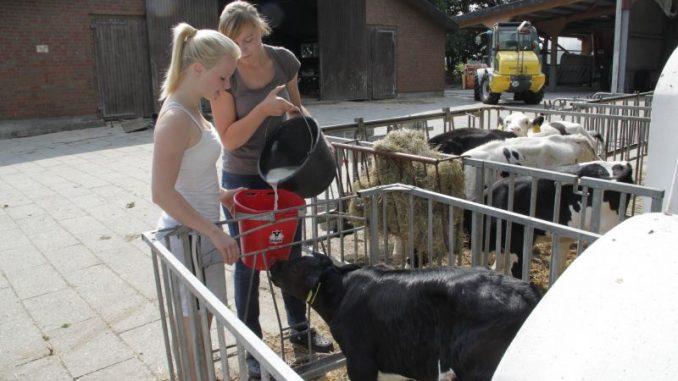 Landwirtschaft bietet viele Perspektiven - Foto: Landvolk