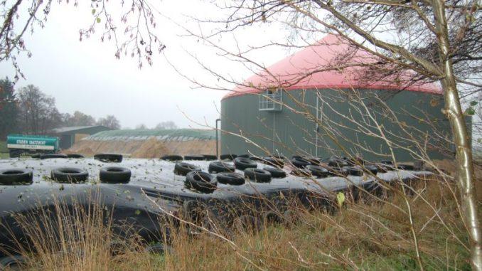 Altmaier will auch Wind und Biomasse deckeln -